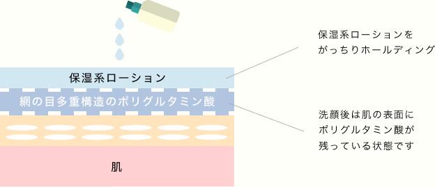 保湿系ローション 網の目多重構造のポリグルタミン酸 保湿系ローションをがっちりホールディング 洗顔後は肌の表面にポリグルタミン酸が残っている状態です